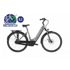 Ebike Das Original C004 Intube Performance Powertube 500 Wh , Hollywood Boulevard (gold Silv