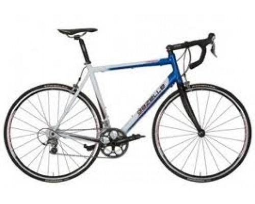 Gazelle Spec.built (105-fsa), Team Wit